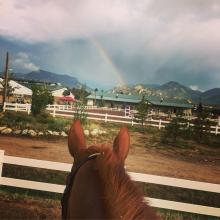 Rainbow Through the Horse's Ears